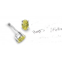 Recently Made Colored Diamonds Designer Collection - Colored Diamonds & White Diamonds Oval Yellow Diamond Earrings Available in Platinum or Gold Settings